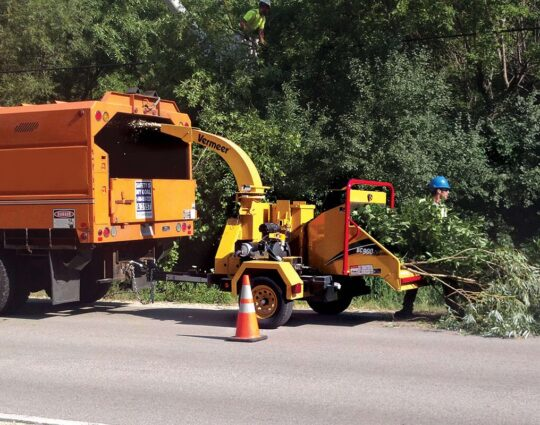 Commercial Tree Services-Henderson Tree Trimming and Tree Removal Services-We Offer Tree Trimming Services, Tree Removal, Tree Pruning, Tree Cutting, Residential and Commercial Tree Trimming Services, Storm Damage, Emergency Tree Removal, Land Clearing, Tree Companies, Tree Care Service, Stump Grinding, and we're the Best Tree Trimming Company Near You Guaranteed!