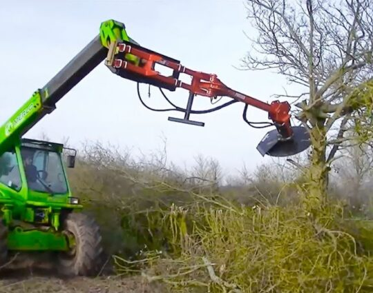 Tree Trimming-Henderson Tree Trimming and Tree Removal Services-We Offer Tree Trimming Services, Tree Removal, Tree Pruning, Tree Cutting, Residential and Commercial Tree Trimming Services, Storm Damage, Emergency Tree Removal, Land Clearing, Tree Companies, Tree Care Service, Stump Grinding, and we're the Best Tree Trimming Company Near You Guaranteed!
