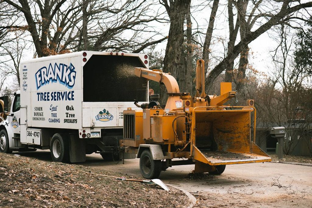 Boulder City-Henderson Tree Trimming and Tree Removal Services-We Offer Tree Trimming Services, Tree Removal, Tree Pruning, Tree Cutting, Residential and Commercial Tree Trimming Services, Storm Damage, Emergency Tree Removal, Land Clearing, Tree Companies, Tree Care Service, Stump Grinding, and we're the Best Tree Trimming Company Near You Guaranteed!